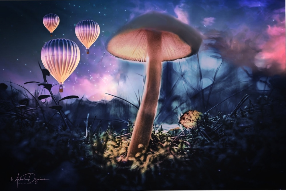 Mushroom with Baloons by 169FE2