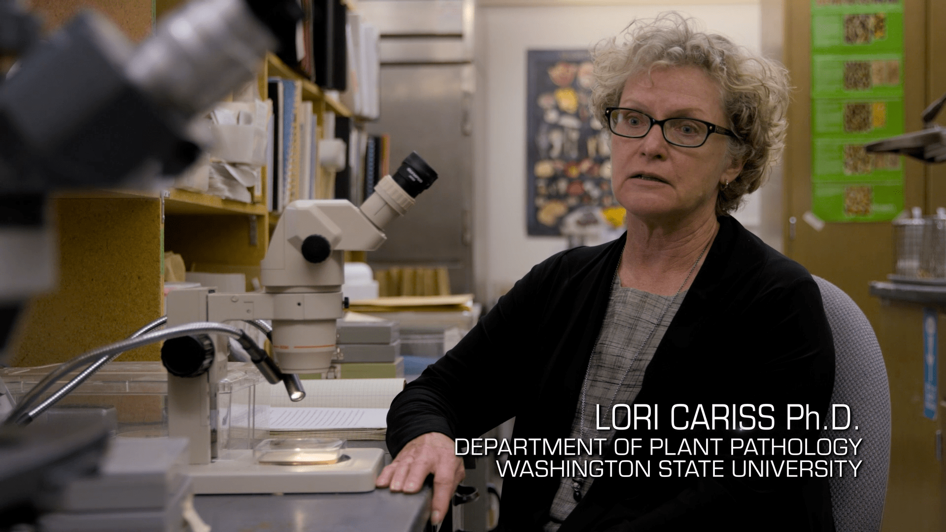 international women's day Is all about women's rights! We have to recognize women in Mycology for their amazing achievements in the field. Lori Cariss is a Ph. D. In the department of plant pathology.