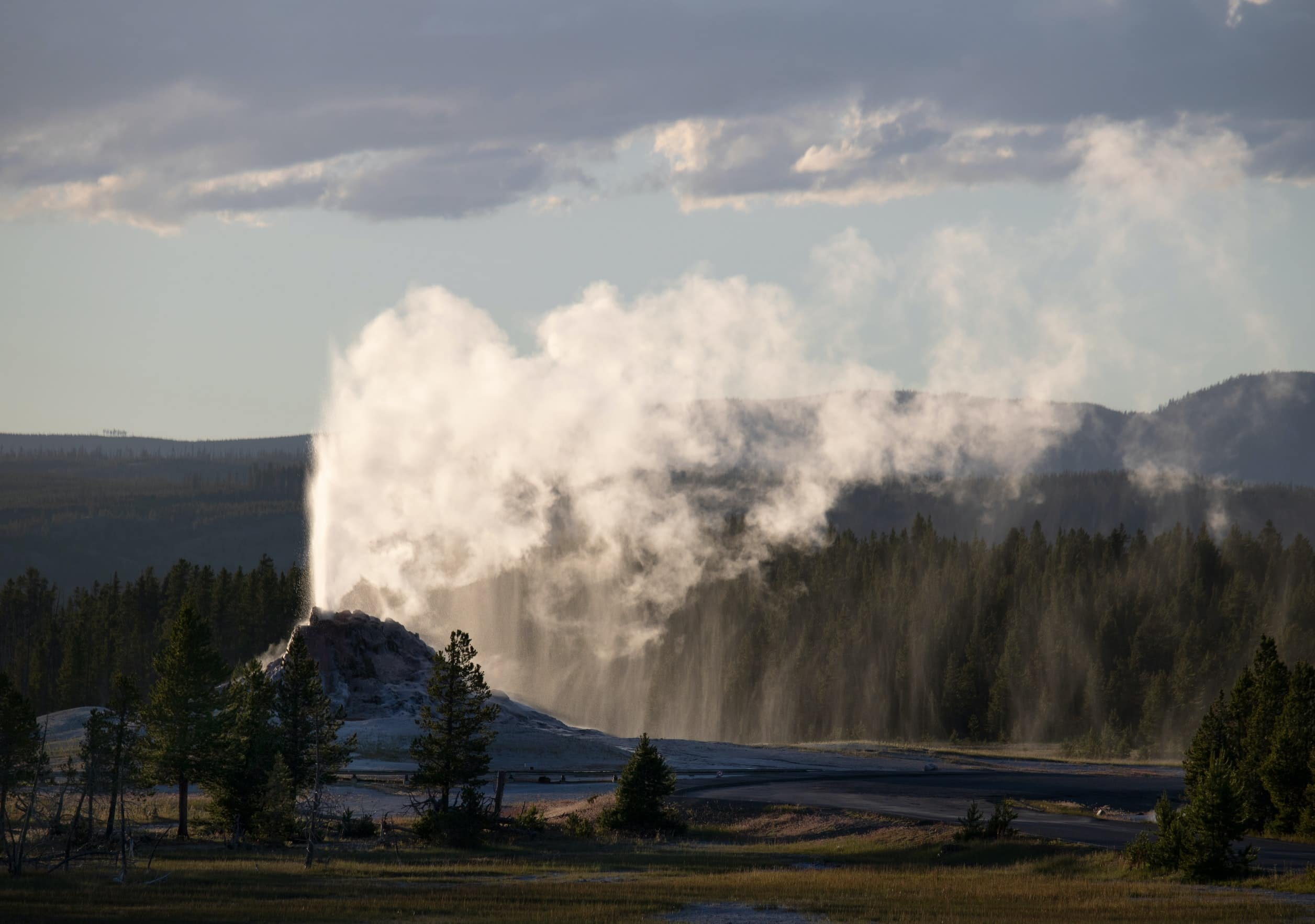 Beef production requires large amounts of resources, land & water. Fungi Based Meat or plant-based diet requires way less resources. Geyser shooting water into the air.